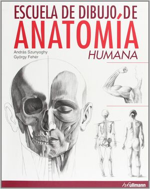 ESCUELA DE DIBUJO DE ANATOMIA HUMANA.
